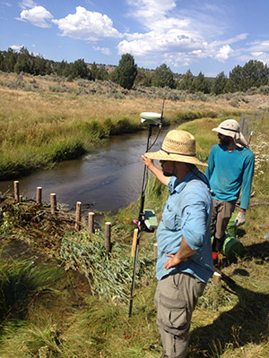 Research teams monitor an artificial beaver dam.