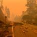 Oregon State University; Oregon State University - Cascades; OSU-Cascades; Science Pub; Wildland fire