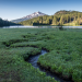 Oregon State University; Oregon State University - Cascades; OSU-Cascades; Science Pub; Science and Policy